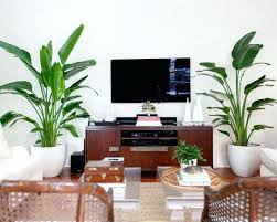 Tropical Living Room Decorating Ideas Tropical Living Room Grapevine Project Info