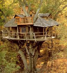 awesome tree houses to live in wooden style classic arts ideas