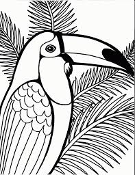 download coloring pages parrot coloring pages parrot coloring