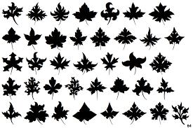 identifont leaf ornaments