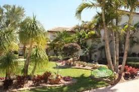 corpus christi tx landscaping tropical palm tree trimming