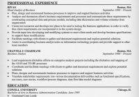 It Business Analyst Resume Examples by It Business Analyst Resume Example 9 Ilivearticles Info