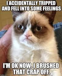 Fell Into Some Feelings Meme - grumpy cat meme imgflip