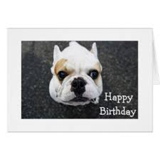verse greeting cards zazzle