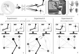 the influence of visual motion on motor learning journal of