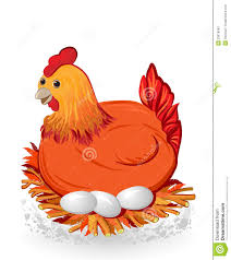 eggs chicken clipart explore pictures