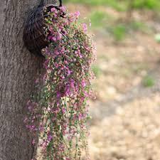 cheap artificial flowers artificial flowers buy cheap artificial flowers from banggood
