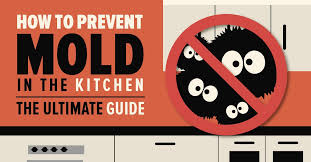 Ultimate Guide To Cleaning Kitchen by How To Prevent Mold The Ultimate Guide Bustmold