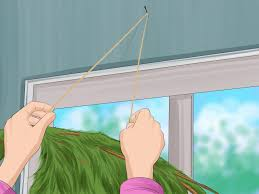 How To Keep Birds Off Your Patio by 3 Ways To Prevent Birds From Flying Into Windows Wikihow