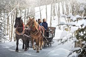 sleigh rides infrastructure in saalbach