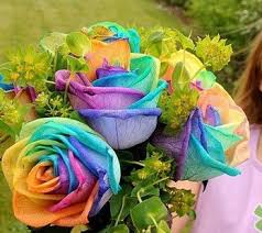 Different Color Roses Different Color Fashion Styles