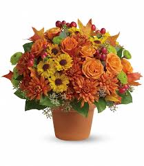 Halloween Country Decor Halloween Archives Flowerama Columbus Sophisticated Display