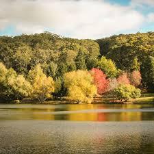 Mt Lofty Botanic Gardens Visitor Information Botanic Gardens Of South Australia