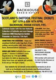 scotland s daffodil festival debut 15th 16th april the daffodil