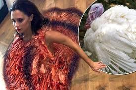 beckham rocks a turkey as she hilariously dresses