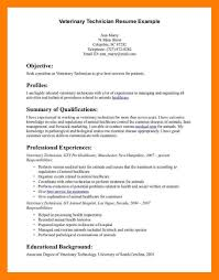 best technical resumes tech resume examples exol gbabogados co