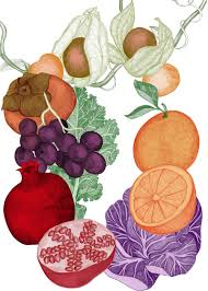 fruit and vegetables studio lofstrom illustration