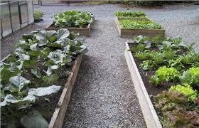 Winter Garden Jobs - winter gardening jobs greengurus