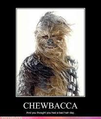 Chewbacca Memes - funny chewbacca memes memes pics 2018