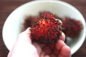 fruit similar to lychee rambutan u0026 lavender fruit salad experimental epicurean