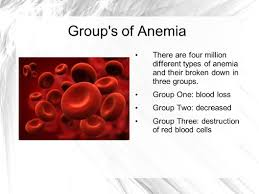 types of red colors anemia by britani prater what is anemia the red blood count is