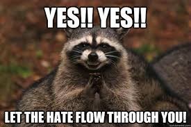 Let The Hate Flow Through You Meme - raccon hate let the hate flow through you know your meme