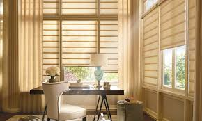 Hunter Douglas Blind Pulls Custom Vignette Modern Roman Shades Decorview