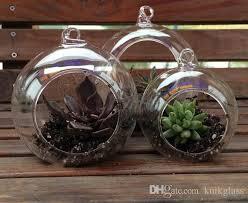 hanging globe terrariums indoor succulent gardenig for