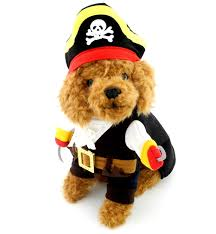 small dog clothes pirate costume puppy cat pet christmas halloween