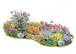 layout idea for the berm in the front yard butterfly gardens