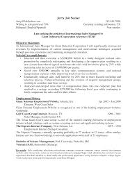 ecommerce business plan template pdf