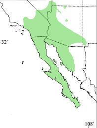 Us Desert Map Western Banded Gecko Tucson Herpetological Society