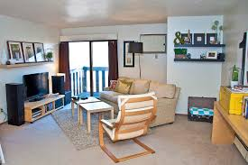 Livingroom Designs Crafty Design Ideas Student Apartment Living Room Decor On Home