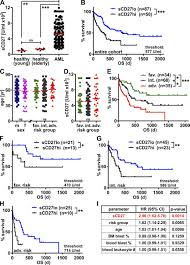cd70 cd27 signaling promotes blast stemness and is a viable