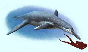 paleontologists identify new pliosaur species luskhan itilensis