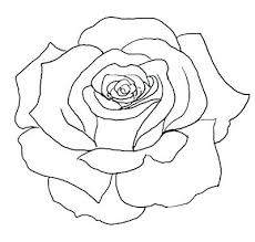 design flower rose drawing rose flower outline drawing easy flower drawing outline rose flower