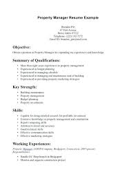 sample of key skills in resume sample key skills for resume best
