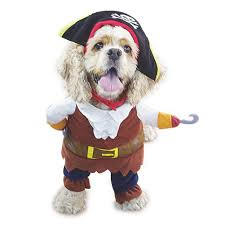 witch costume for cats amazon com nacoco pet dog costume pirates of the caribbean style