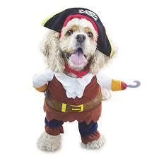 amazon com nacoco pet dog costume pirates of the caribbean style