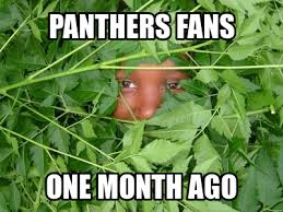 Panthers Suck Meme - hate fans that only support their team when its convenient been a