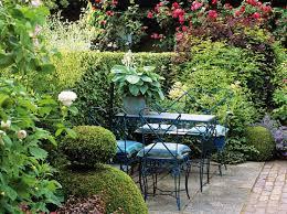 tipps für den sichtschutz im garten heckenpflanzen