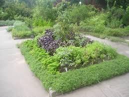 herb garden layout ideas zandalus net