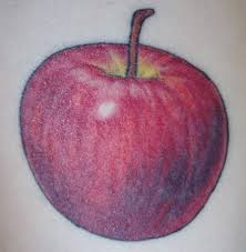 25 best tree apple tattoo images on pinterest painting abstract