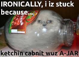 Invisible Cat Memes - maze op art op art font maze of taurus and hilarious cat memes