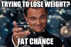 Losing Weight Meme - leonardo dicaprio cheers meme imgflip
