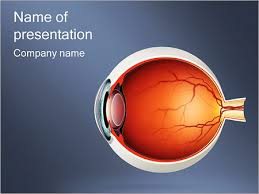 Anatomy Of Human Eye Ppt Eye Powerpoint Template Smiletemplates Com