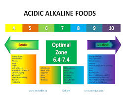 alkaline acidic inflammation cancer ottawa naturopath