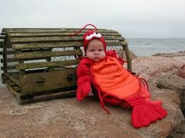 Halloween Costumes Newborns 20 Baby Lobster Costume Ideas Funny Baby