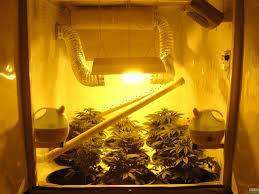 building a propher growbox grow room design opengrow