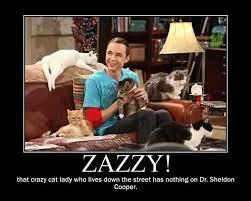 Big Bang Theory Birthday Meme - sheldon cooper zazzy i sheldon cooper big bang theory